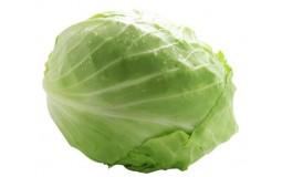 农家自种 圆白菜1个 新鲜时令蔬菜