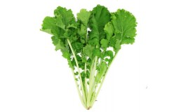有机苔菜 薹菜 新鲜蔬菜 绿叶蔬菜 250g