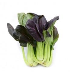 彩虹云宝 有机青菜蔬菜 紫叶小白菜250g