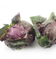 新鲜蔬菜落地球生菜紫苣绿叶红包菜红菊苣生菜5斤