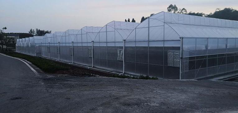 农业服务信息网,大棚配件,水肥一体化,光伏大棚,温室大棚,大棚材料,大棚骨架,大棚养鱼,养鱼大棚