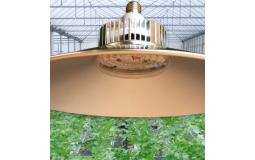 全光谱温室大棚植物补光灯 生长灯室内蔬菜瓜果草莓上色LED仿太阳补光灯 50W-5红1蓝